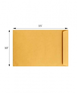 "Giant Envelope 10"" X 15"" (F4)"