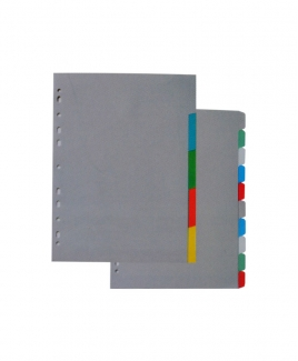 Plastic Colour Index Divider 10's